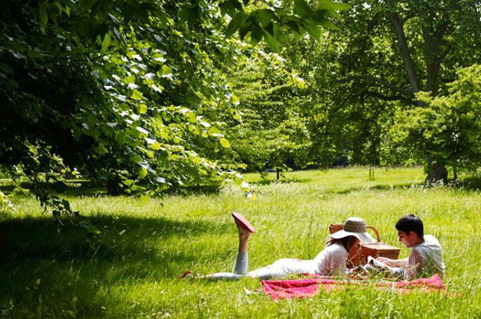 kano picknick